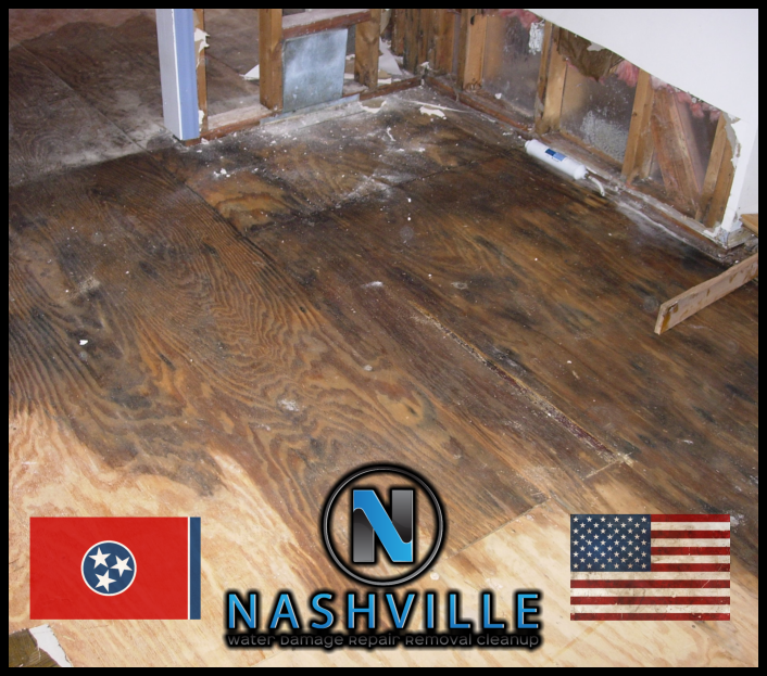 Nashville Water Damage Repair Removal Cleanup Commercial Restoration 83